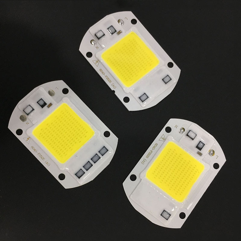 10 PCS LED COB Chip 50W 40W 30W 20W 10W AC 220V 110V No need driver Smart IC bulb lamp For DIY LED Floodlight Spotlight
