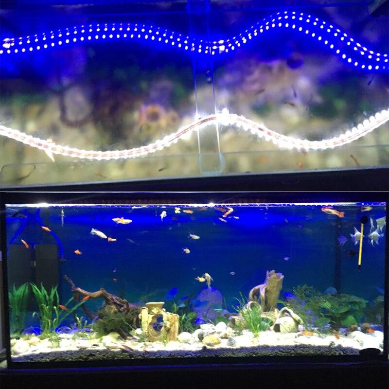 фото показать аквариумной подсветки из лед ленты