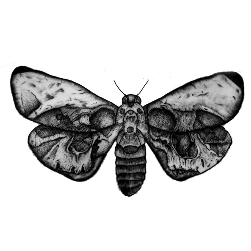 Moths Vattentät Tillfälliga Tatueringar Män Body Arm Sticker - Tatuering och kroppskonst