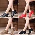 Split Soles Middle Heel Women's Tango Flamenco Dance Shoes Teacher's Shoe Girls Waltz Tango Foxtrot Quick Step Dance Shoes