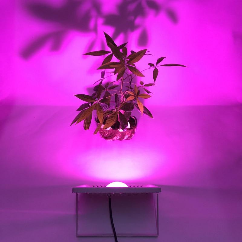 Levou Crescer Luzes estufa crescer tenda crescer ao Net Peso 480g : Feature1:ultrathin