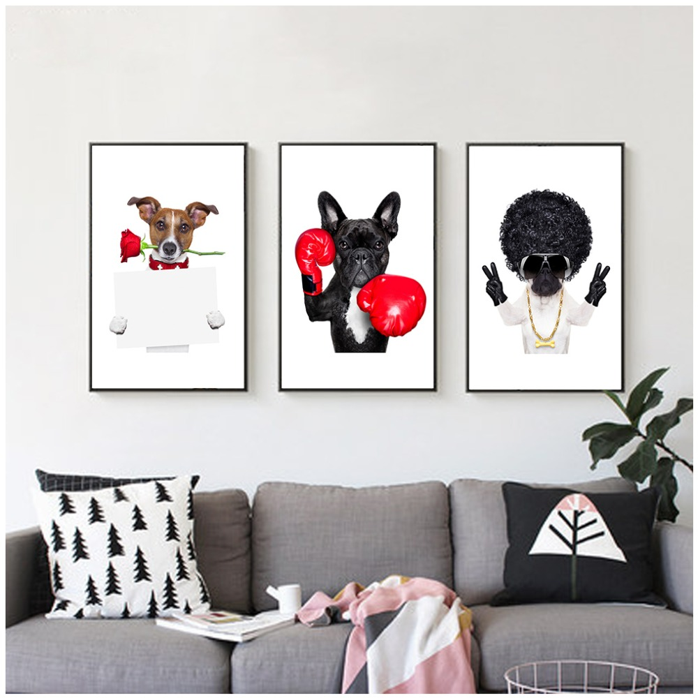 Compra fun animal pictures y disfruta del envío gratuito en ...