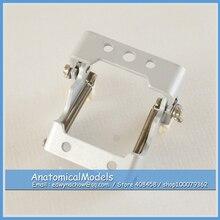 ED DH1416 FE Articulator for FE Dental Model Medical font b Science b font Educational Dental