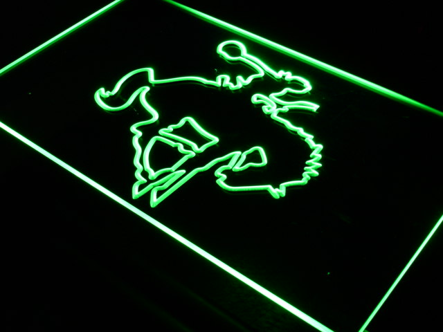 i710 Western Cowboy Rodeo Horse Bar LED Neon Light Sign On/Off Switch 20+ Colors 5 Sizes