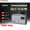 Original Audio Recorder/player CIR100 Broadcast Recorder Mini Radio Tecsun ICR-100 FM radio TF SD card speaker Portable Radio