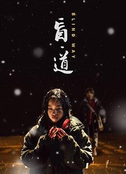 《盲·道》2017年中国大陆剧情,犯罪电影在线观看