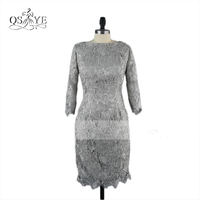 Elegnat Grey Lace Short Evening Dresses 2017 Real Photos Boat Neck Long Sleeve Women Formal Occasion