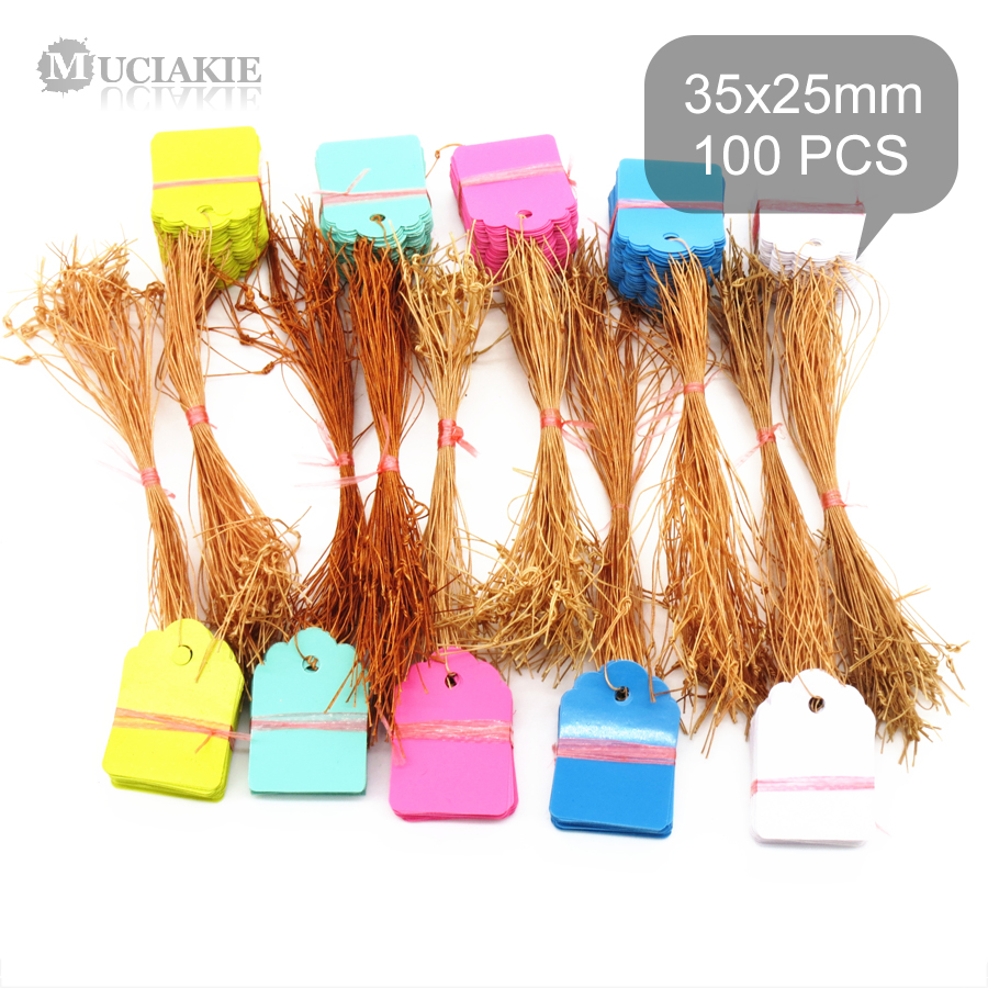 100PCS 35x25MM Plastic PVC Garden Markers Plants Tags With Rope Ties Line Seedlings Hanging Labels Rose Geranium Sign