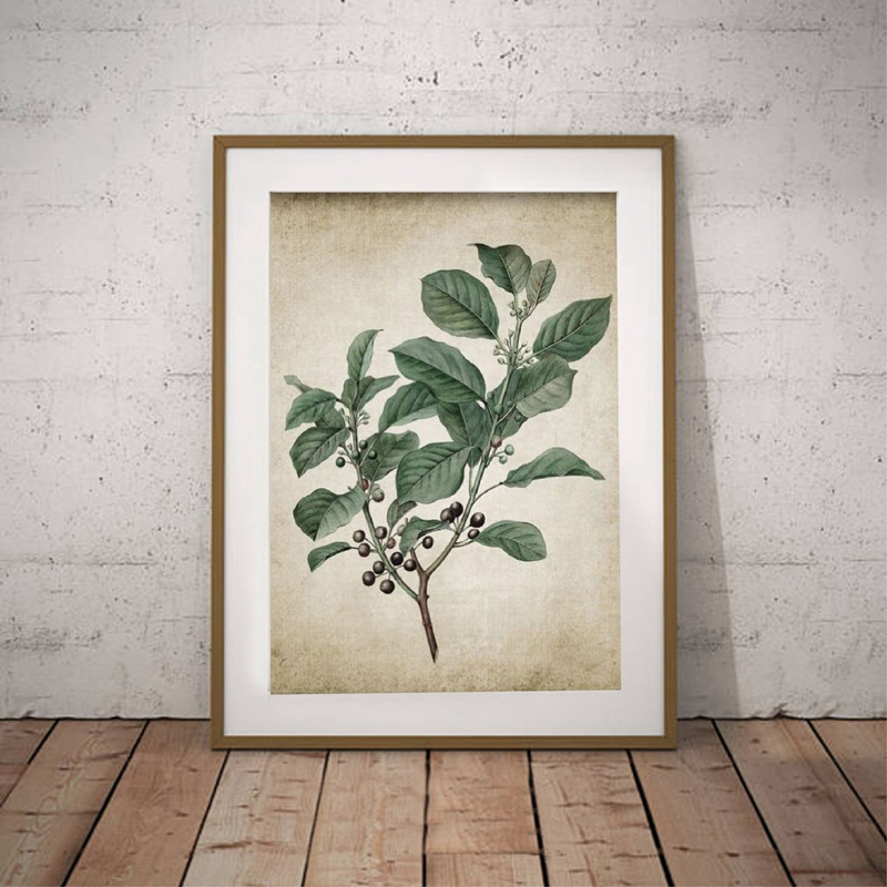 Green Plant Canvas Art Print Home Decor