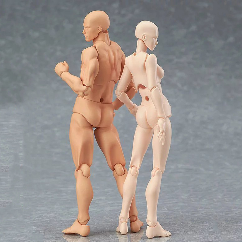 Hot 14.5cm Figma Archetype He She PVC Action Figure Human Body Joints Male Female Nude Movable Dolls Anime Models Collections hot artist movable limbs male female 14cm figma joint body action figure toys model mannequin bjd art sketch draw action figures