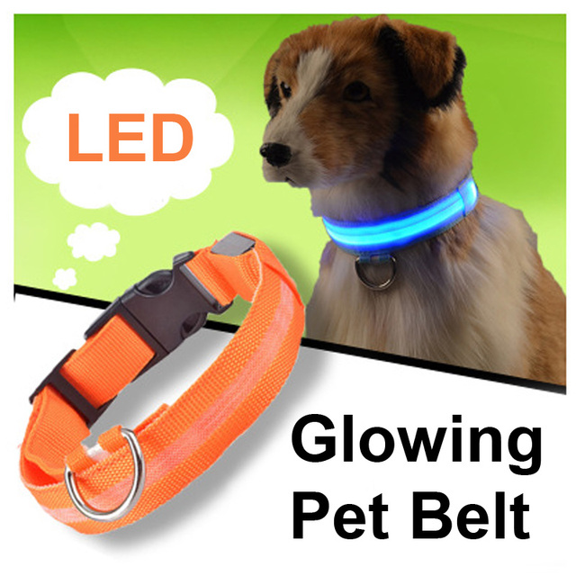 Pet LED Dog Collar Per Cat Nylon Notte di Sicurezza Anti-lost Light Up Lampeggia