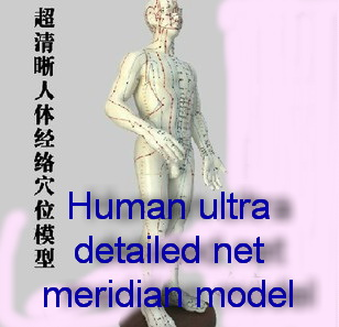 рыбная база меридиан