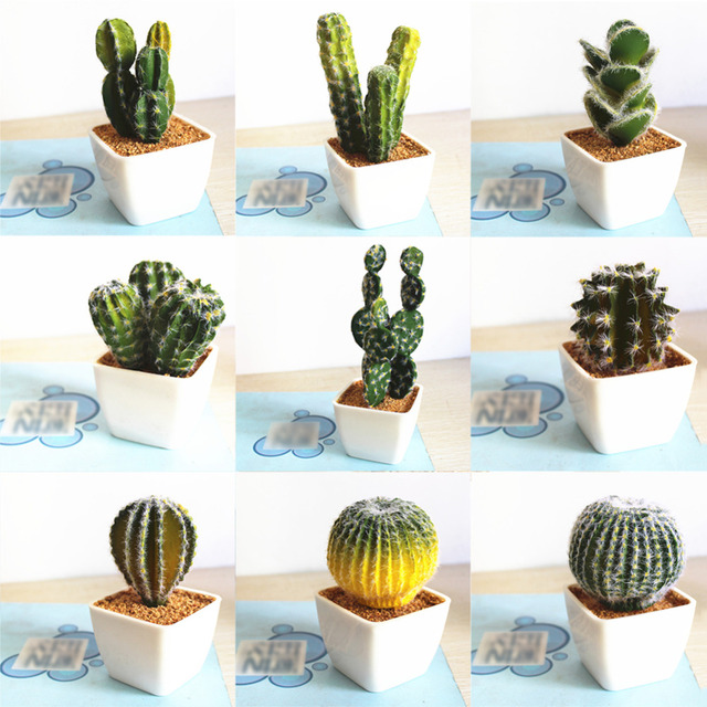 Simulation Tropical Plants Cactus Bonsai Innovative Diy Succulents Potted Ornaments Nice Home Decoration 9 Types