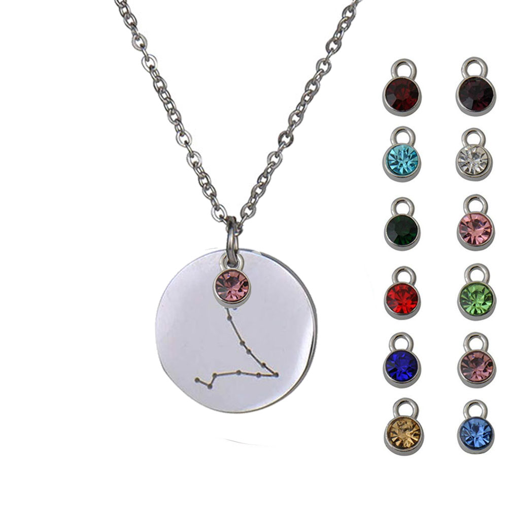 25mm Disc Custom Engrave Horoscope Charm Necklace Birthstone Women St. Steel Constellation Disc Necklace Birthday Gift NL2659