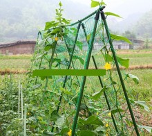 Free shipping 1.8X1.8m Garden Netting Vine Plant Climbing Mesh Net Nylon Material Only