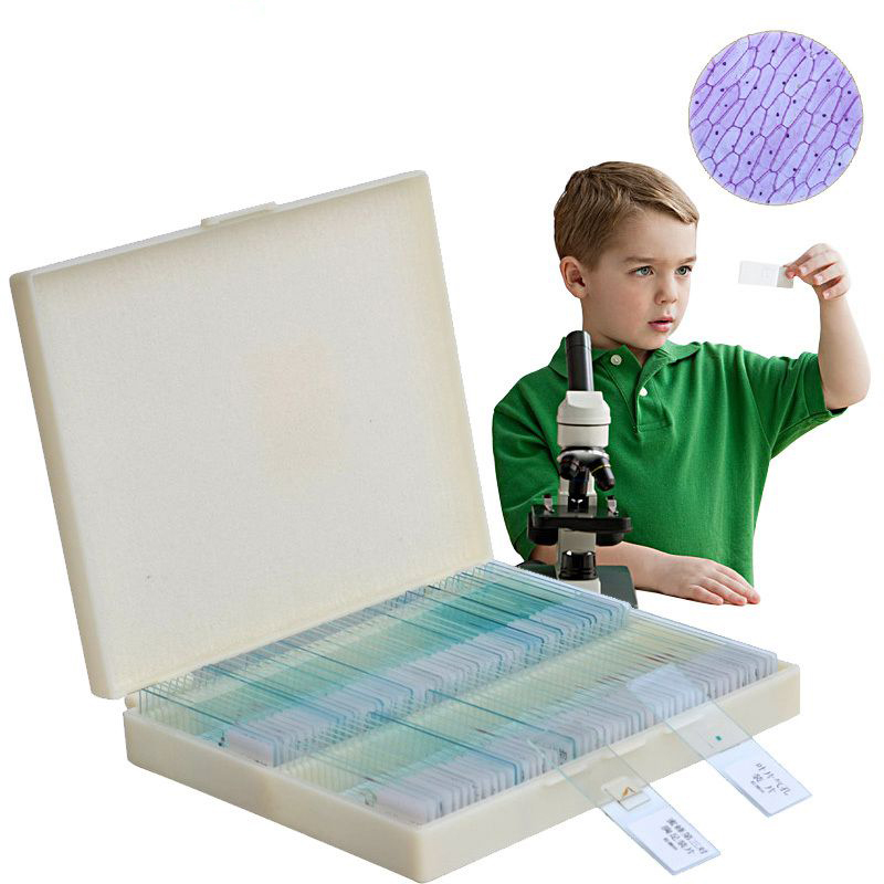 100PCS Box Set Prepared Microscope Speciments Slides for Basic Student Lab Science Biology Education
