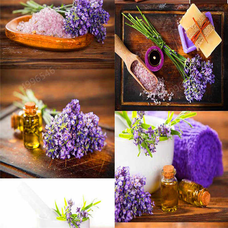 200pcs Lavender Angustifolia Bonsai Imported Vanilla Beautiful Lavender Flower Outdoor Plants For Home Garden decoration
