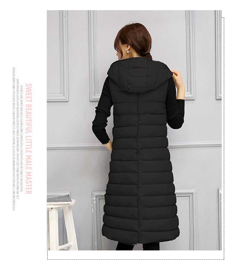 6 coats