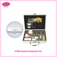 2017 Enkele Laag Diamant Enten Uitstekende Valse Eye Wimper Extension Kit Volledige Set met Case Voor Make-up gratis shippung