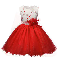 2014 New Girl Dress 2 13 Baby Children Dress Rose Flower Princess Chiffon Dress A Variety