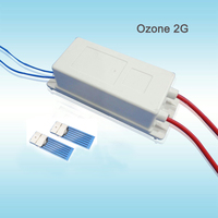 2g 25W Selfcleaning Air Ozone Generator 220V Air Purifiers Ionizer Ozone Disinfector ND 2GL