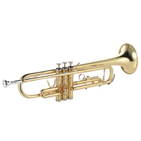 ammoon Trumpet Bb B Flat Brass Gold painted Exquisite Durable Musical Instrument with Mouthpiece Valve Oil Gloves Strap Case
