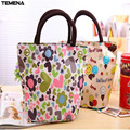 TEMENA lunch bag thermal bag lunch box picnic bag 4 colors lancheira termica bolsa termica Cartoon Carry Case ALB389