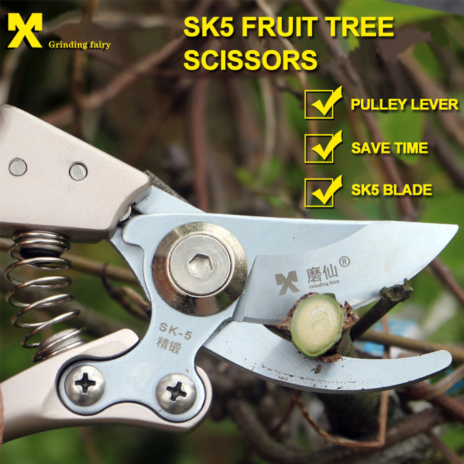 Image 2 - Pruning tools SK5 High Carbon Steel Fruit Tree Pruning Scissors Garden Pruning Sharp And Use Durable Knife Secateurs Scissors-in Pruning Tools from Tools