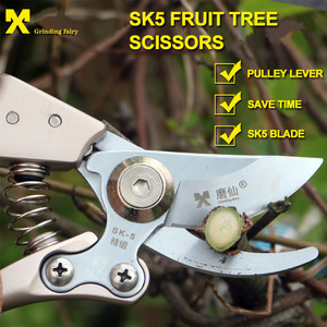 Image 2 - Pruning tools SK5 High Carbon Steel Fruit Tree Pruning Scissors Garden Pruning Sharp And Use Durable Knife Secateurs Scissors