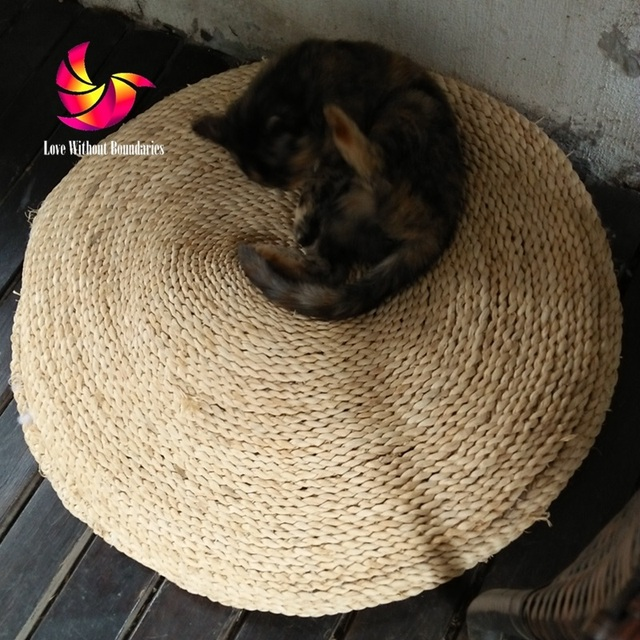 Medium image of pet fetus mat natural straw futon hand woven round cat dog