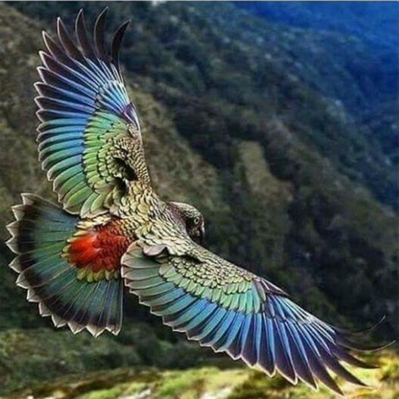 Mosaic Painting Diamond Embroidery Animals Full SquareRound Drill 5D DIY Diamond Painting  Eagle Decoration Home