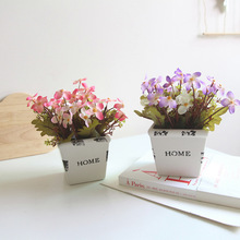 Simulated Flowers and Small Potted Landscape Set Handicraft Plants with Nocturnal Gray Ceramic HOME