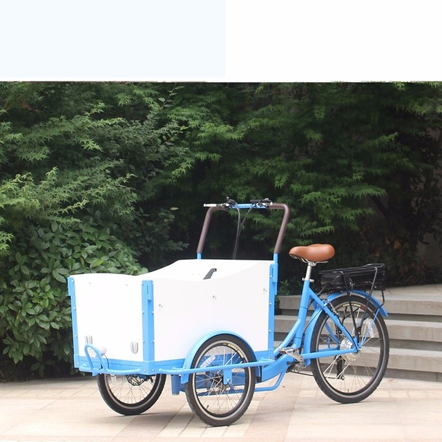 Denmark Front Loading 3 Wheel Electric Kids Tricycle Cargo