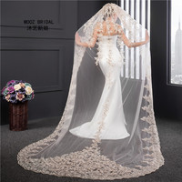 Champagne Wedding Veils 2017 Real Images New Style Sequins Appliques One Layer Veils In Stock Luxury 3m Lace Bridal Veil