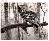 Frameless Painting By Numbers Animal Owl Picture Diy Digital Oil Painting Gift Paint By Number Kits