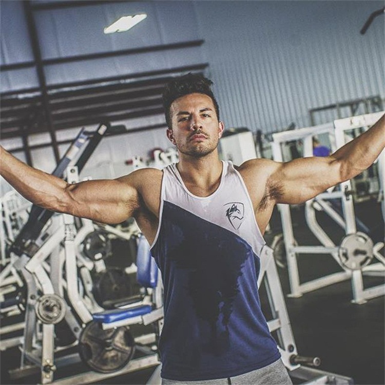 ALPHALETE 2019 New Summer Newest Brand Mens Patchwork Gyms Stringers Vest Bodybuilding Clothing Fitness Men   Tanks     Tops