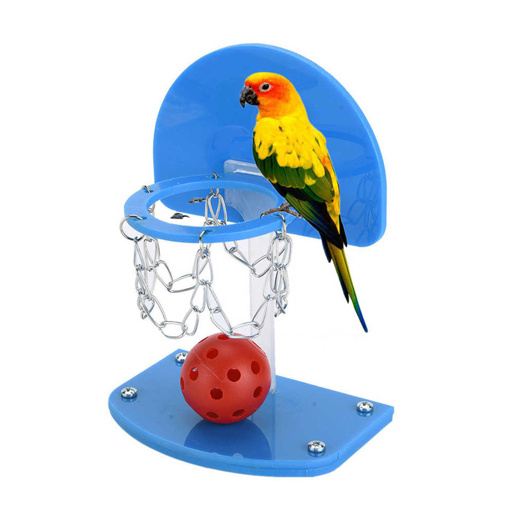 Pet Birds Supplies Funny Mini Basketball Hoop Basketball Shoot Toy for Parrot Intelligence Puzzle Developmental Game Chew Toys