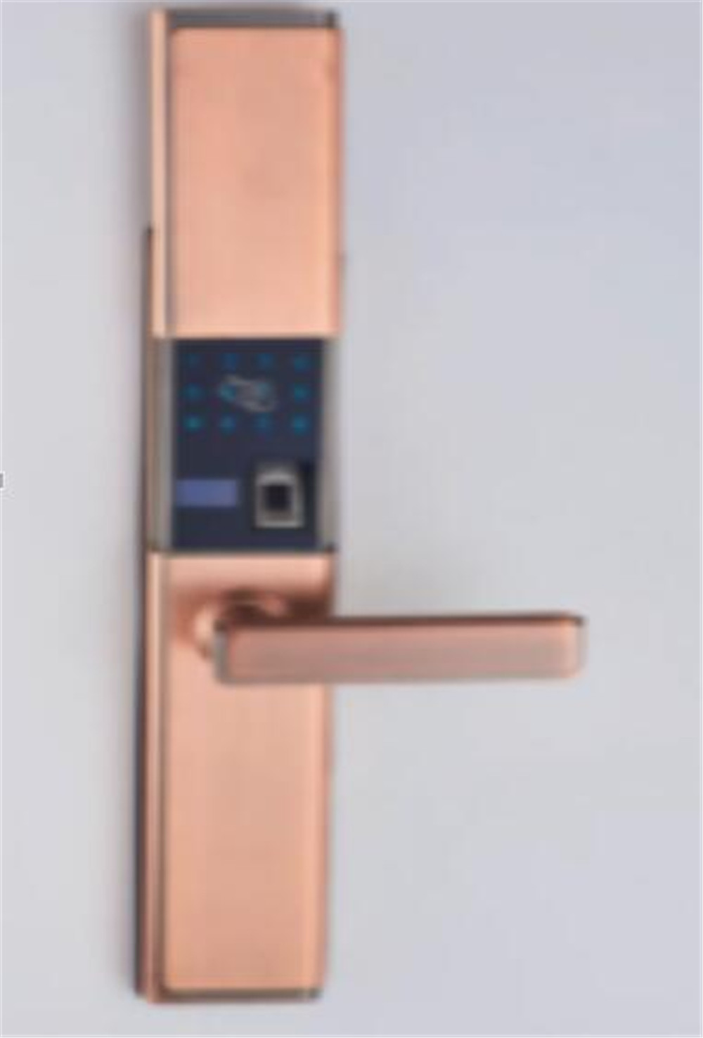 Güvenlik ve Koruma'ten Elektrikli Kilit'de App Uzaktan Kumanda Parmak Izi/Şifre/KIMLIK Kartı erişim kontrollü kapı kilidi title=
