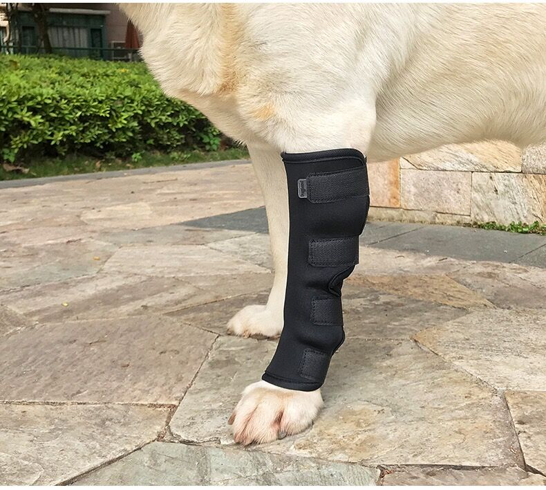 Pet Dog Cat Knee Joint Leg Protector Calf Brace Support For Avoiding injury anti-twist light inflammation fixed recovery strap