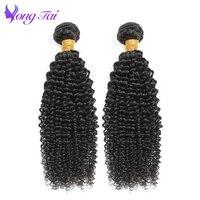 Brazilian Hair Extensions Afro Kinky Curly 100 Human Hair Bundles Two Bundles Non Remy Natural Black