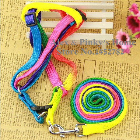Colorful Style font b Pet b font Harness Leashes For Dogs Collar Rainbow Dog font b