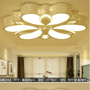 New LED ceiling lamp wrought iron living room lamp special bedroom dining room lamp lamp lighting