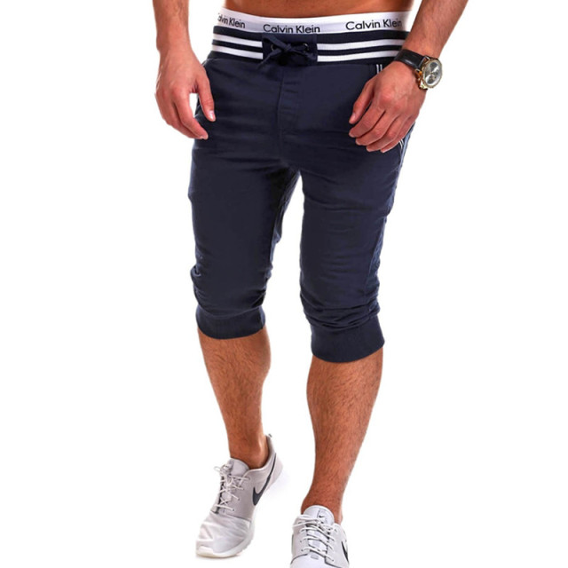 2016 New Mens Shorts Casual Summer Cotton Sweat Shorts Homme Beach Slim Fit Short Pants Sportwear Pantalon Hombre