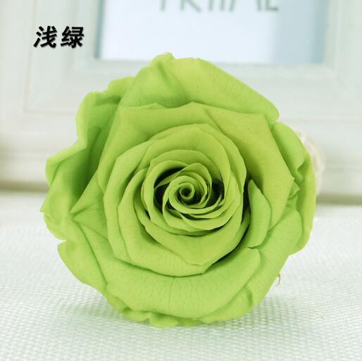 Light Green Preserved Rose Flower Festival Given Gifts 8pcs/box Immortal Rose Flower Wedding Decorative Natural Rose