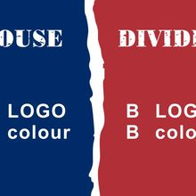 Different styles House Divided Flag 3ft x 5ft Polyester NFL Banner Flying Size No.4 90*150cm flag Making order links