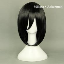 Attack on Titan Wigs Levi Rivaille Eren Jager Jean Kirschtein Mikasa Ackerman Armin Arlert Cosplay Wigs Halloween Hair (10+ styles)