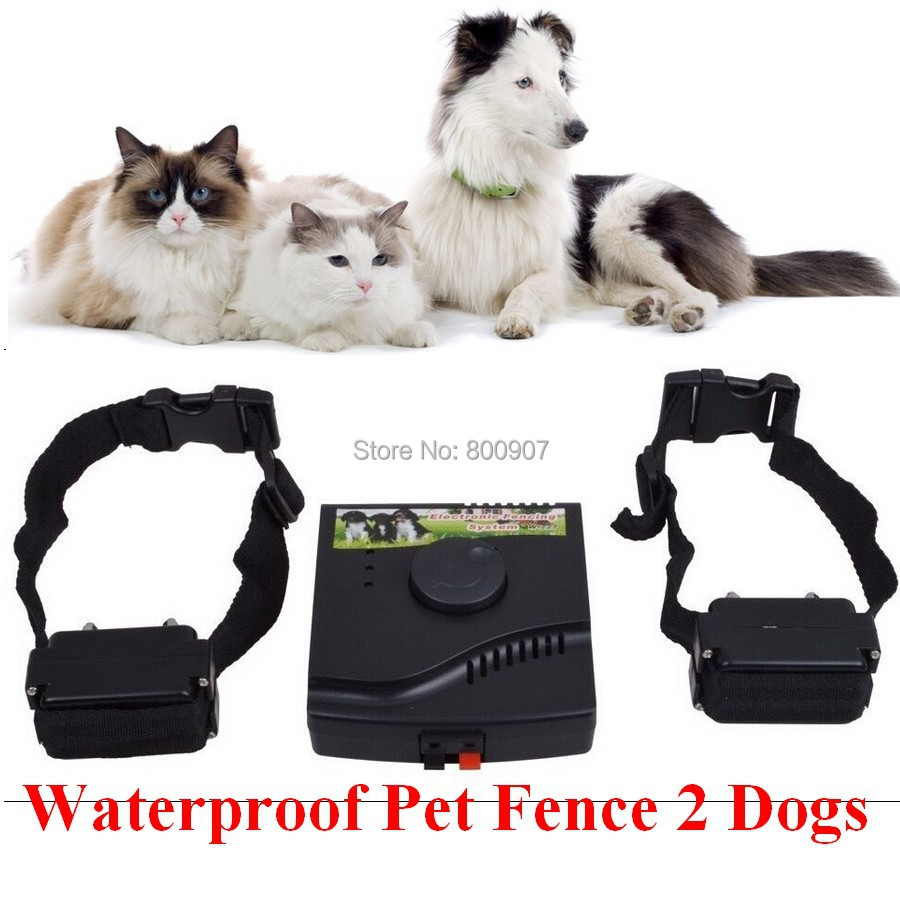 2dogs Underground Waterproof Pet Electric fence Shock Collar Electric Dog Pet Training Fence Fencing System Dog Trainer  Fence-in Training Collars from Home & Garden    1