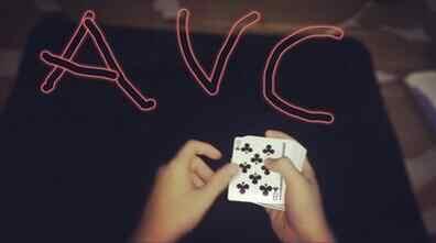 2015 AVC による変更 Quang Cd 手品