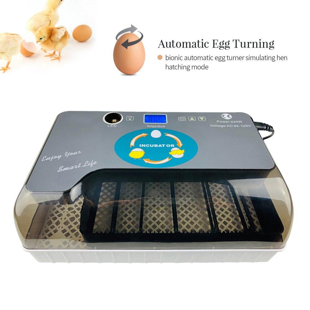 Cyfrowa jajko inkubator automatyczne jaj Hatcher z Eggtester automatyczne toczenie jaj 12 jaj drobiu Hatcher 1.4 wyświetlacz ekran w Produkty do nawożenia i nawadniania od Dom i ogród na  Grupa 2
