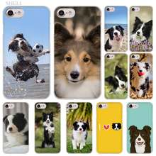 PlusBorder Collie Cão moda do Caso da Tampa transparente para o iphone XI R 2019 Max XR XS X 4S 5S SE 6 7 8 6s Plus(China)